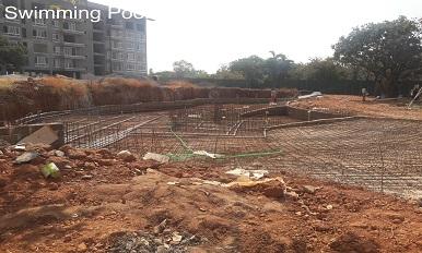 ZRF,Goa - Swimming Pool